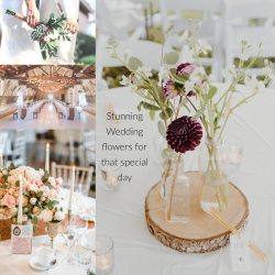 https://tietheknotwedding.co.uk/listings/white-orchid-events